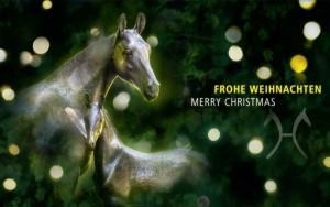 hannoveraner_weihnachten
